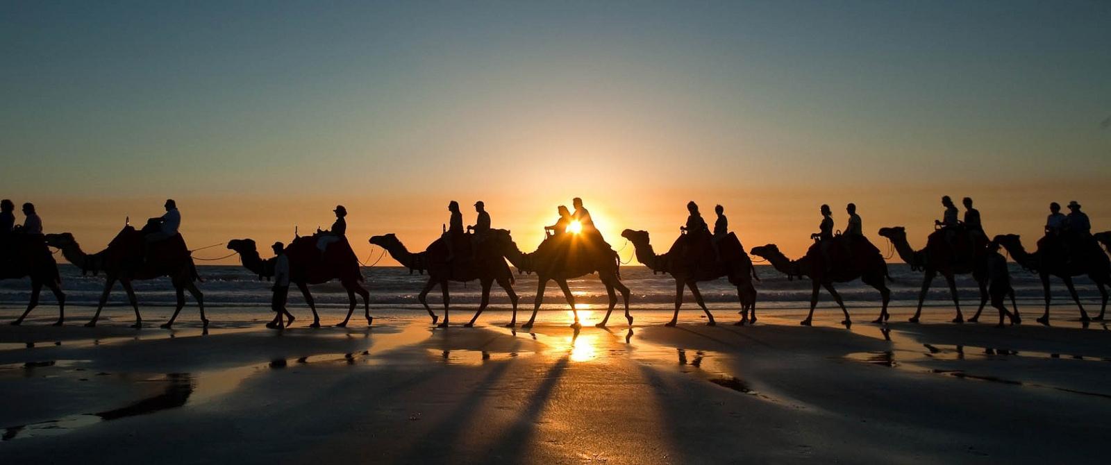 camel day trip