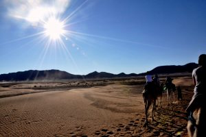 Trek in Morocco -Combined Activities / atlas mountains and desert trip