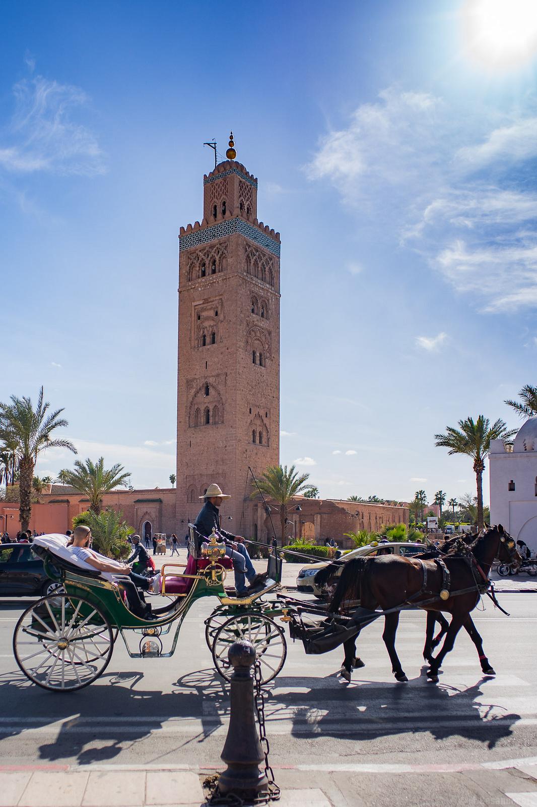 Trek in Morocco -Combined Activities / atlas mountains and desert trip