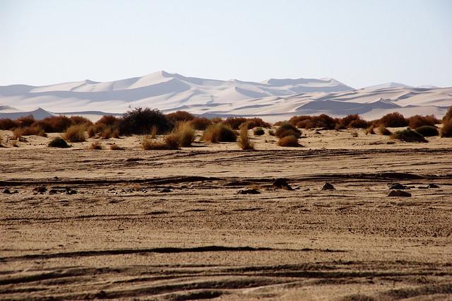 8 day biking atlas mountain to the sahara desert / Biking tour
